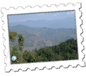 Mountain view from Mirik in West Bengal